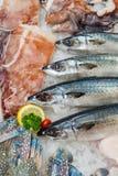 Свежие морепродукты на льде, конце-вверх стоковое фото rf