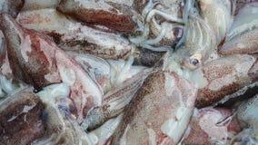 Свежие морепродукты, осьминог на таблице fisher на рынке Свежие морепродукты от местного рынка Стоковые Фото