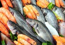Свежие морепродукты Стоковая Фотография RF
