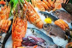 Свежие морепродукты Стоковое Изображение RF