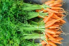 Свежие моркови младенца на рынке фермеров стойки обочины в Thailan Стоковые Фото