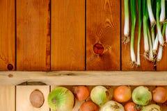 Свежие молодые зеленые луки на деревянном столе Стоковые Изображения RF