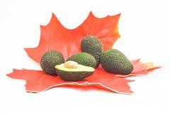 Свежие неполная вырубка и группа в составе авокадо Стоковые Изображения RF
