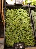 свежие овощи вещества зеленого перца стоковые изображения rf