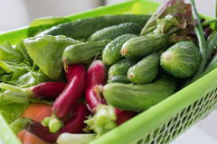 Свежие овощи в конце-вверх корзины стоковые фотографии rf