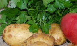 Свежие овощи закрывают вверх Стоковое фото RF