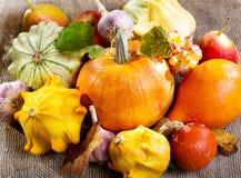 Свежие овощи и плодоовощи Стоковые Фотографии RF