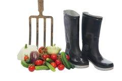 Свежие овощи около вилы и ботинок, изоляции Стоковое фото RF