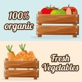 Свежие овощи органические с изображением деревянной коробки иллюстрация вектора