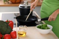 Свежие овощи, салат и постное масло на предпосылке женщины варят плитой в кухне Стоковая Фотография RF