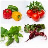 Свежие овощи с зелеными листьями на белой предпосылке Стоковые Изображения
