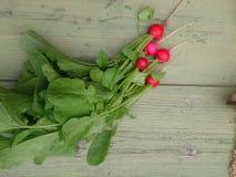 Свежие овощи с салатом и зелеными цветами Стоковые Фотографии RF