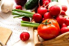 Свежие овощи - томаты, редиски, зеленые луки, огурцы Стоковое фото RF