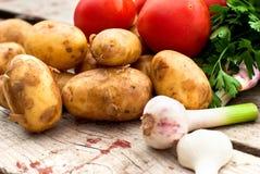 Свежие овощи - томаты, редиски, зеленые луки, огурцы Стоковая Фотография
