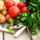 Свежие овощи - томаты, редиски, зеленые луки, огурцы Стоковое Изображение RF