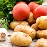 Свежие овощи - томаты, редиски, зеленые луки, огурцы Стоковые Фотографии RF