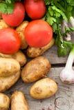 Свежие овощи - томаты, редиски, зеленые луки, огурцы Стоковая Фотография RF