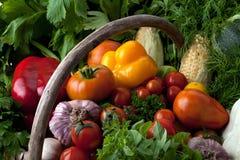 Свежие овощи. Стоковая Фотография