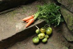свежие овощи Стоковая Фотография