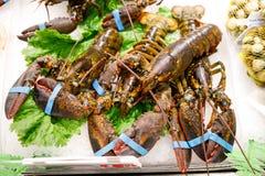 Свежие омары на льде Покрашенное lookz artropods аппетитное стоковые изображения rf