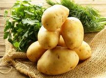 Свежие органические картошки Стоковая Фотография