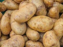Свежие органические картошки проданные на рынке утра Стоковая Фотография