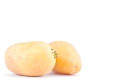 свежие органические клубни картошек на изолированной еде белой картошки предпосылки здоровой Vegetable Стоковое Изображение