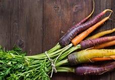 Свежие органические моркови радуги Стоковые Изображения RF