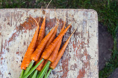 Свежие органические моркови с зелеными листьями на деревянной предпосылке Стоковые Фото