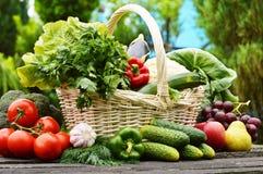 Свежие органические овощи в корзине wicker в саде стоковые изображения rf