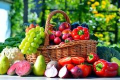 Свежие органические овощи и плодоовощи в саде стоковые изображения