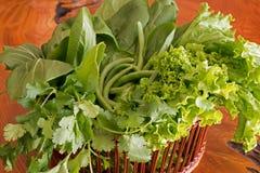 Свежие органические овощи Стоковое Изображение RF
