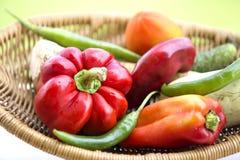 Свежие органические овощи Стоковые Фото