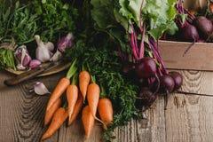Свежие органические осенние овощи, время сбора Стоковые Изображения RF