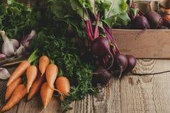 Свежие органические осенние овощи, время сбора Стоковая Фотография RF
