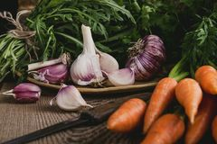 Свежие органические осенние овощи, чеснок, arugula и моркови Стоковые Фотографии RF