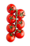 Свежие органические томаты изолированные на белой предпосылке Стоковое фото RF