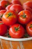 свежие органические томаты Стоковые Изображения