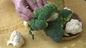 Свежие органические цветная капуста и брокколи акции видеоматериалы