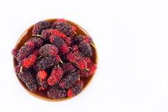 Свежие органические шелковицы в коричневом шаре на изолированной еде плодоовощ шелковицы белой предпосылки здоровой Стоковая Фотография RF