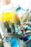 Свежие оливковая ветка и масло Стоковая Фотография RF