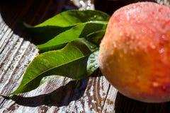 Свежие персики, предпосылка плодоовощ персика близкая поднимающая вверх, персик на деревянном ба Стоковые Фотографии RF