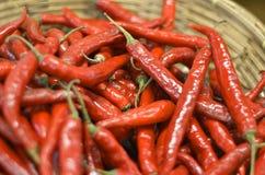 Свежие перцы красного chili в деревянной корзине Стоковое Изображение RF