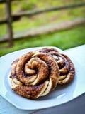 Свежие печенья циннамона Стоковое фото RF