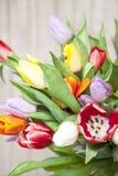 Свежие покрашенные тюльпаны перед деревянной предпосылкой Стоковое Фото