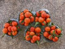 Свежие померанцы мандарина стоковое фото