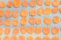 Свежие половины абрикоса, варить высушенных абрикосов Стоковая Фотография RF