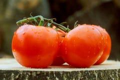 Свежие половины томата на деревянном столе Стоковое Изображение