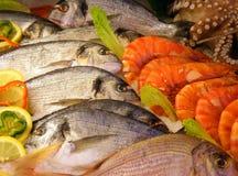 свежие продукты моря стоковое фото