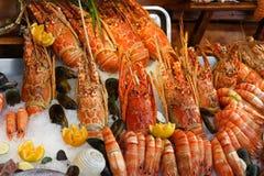 свежие продукты моря Стоковое фото RF